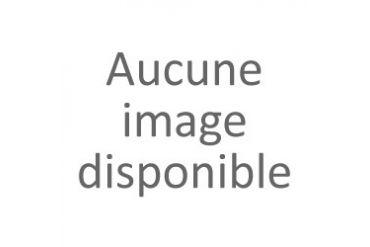 Côte de boeuf à l'unité Conditionnement-pièce de 1kg (21,30 € / kg)